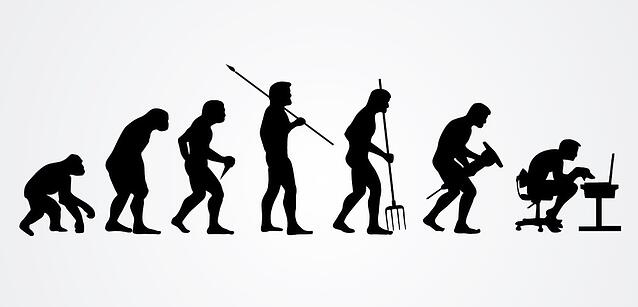 The Evolution of Employability